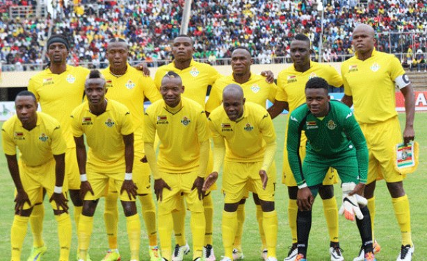 Zimbabwe given green light to resume training for Chan